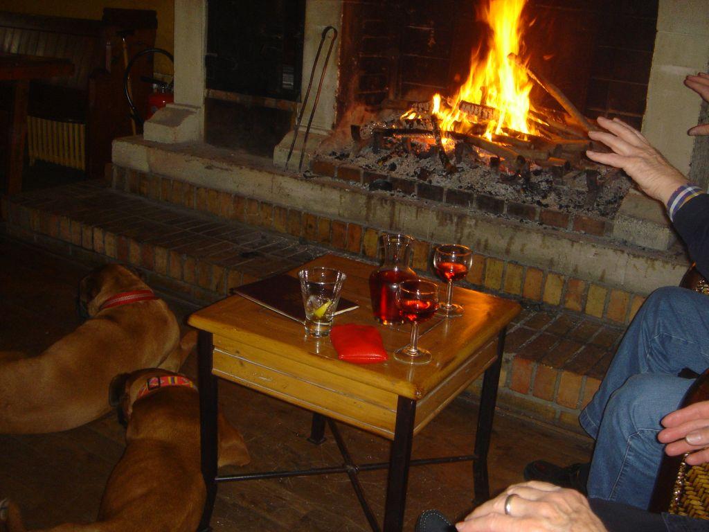 Kaminfeuer mit Hunden romantisch